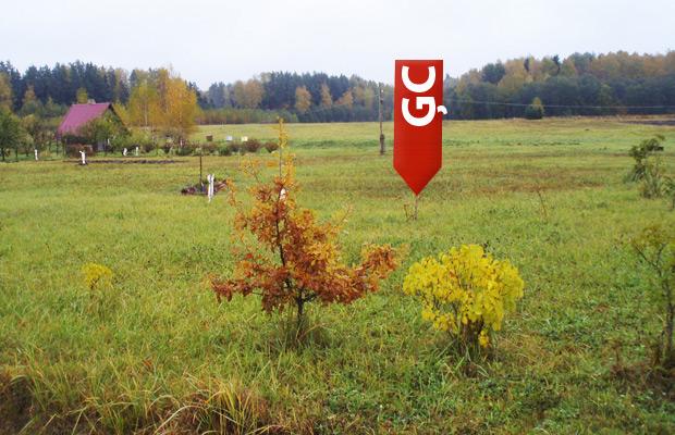 Latvijas ģeogrāfiskais centrs